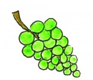 Rijmpje_09_Druiven