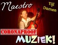 Maestro Muziek Interactieve Coronaproof Kindervoorstelling